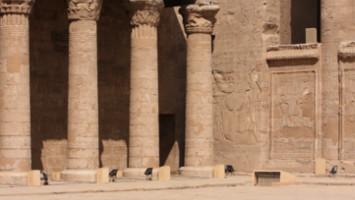 Тунис, Египет и Дубай - диви приключения - 6 епизода