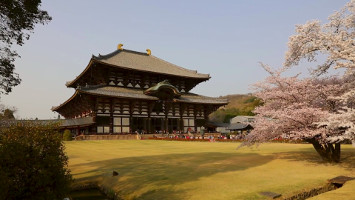Япония - 8 епизода